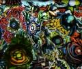 jim_grafsgaard__tracy_pj___anima__2006_usa_video