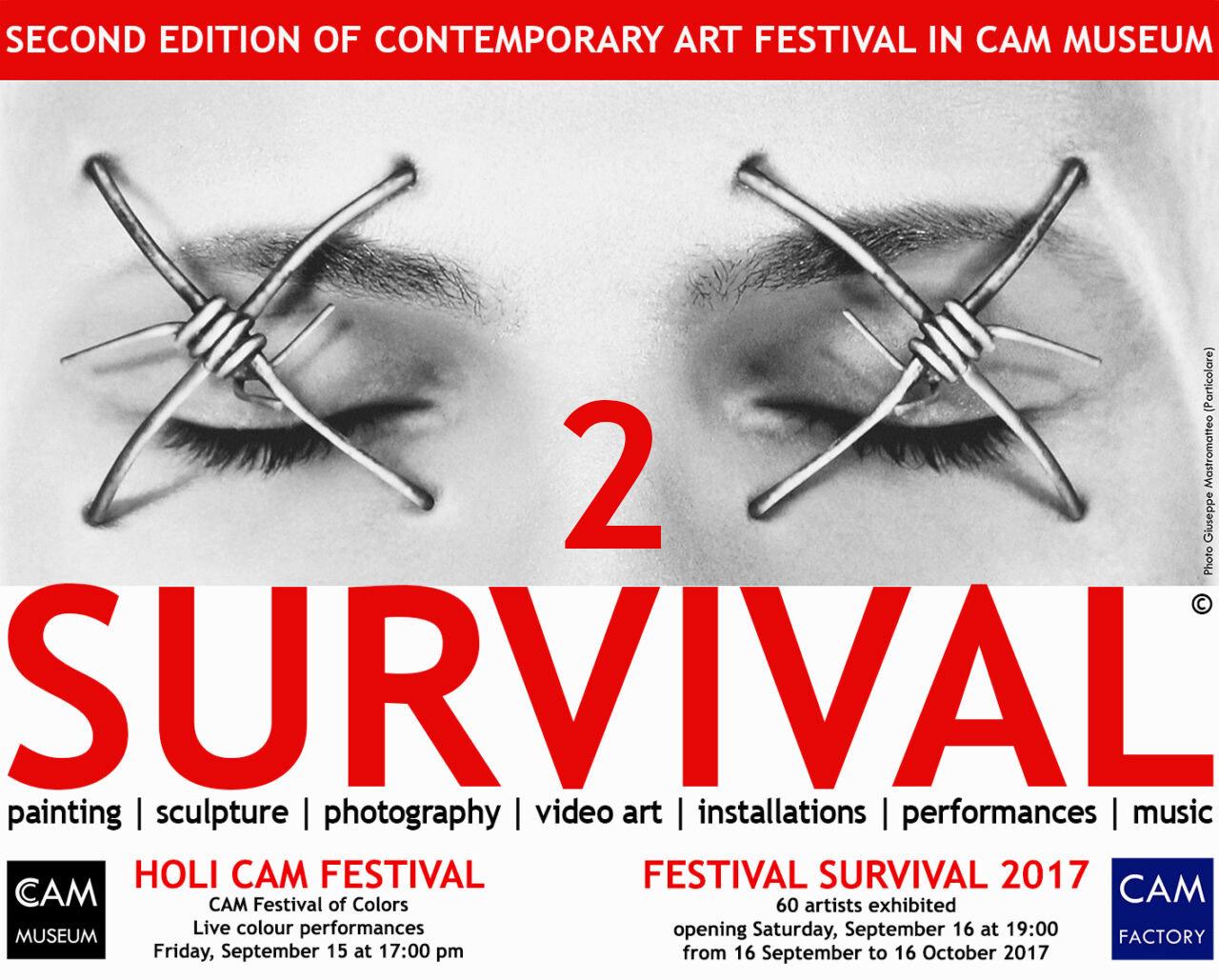 FESTIVAL SURVIVAL 2017